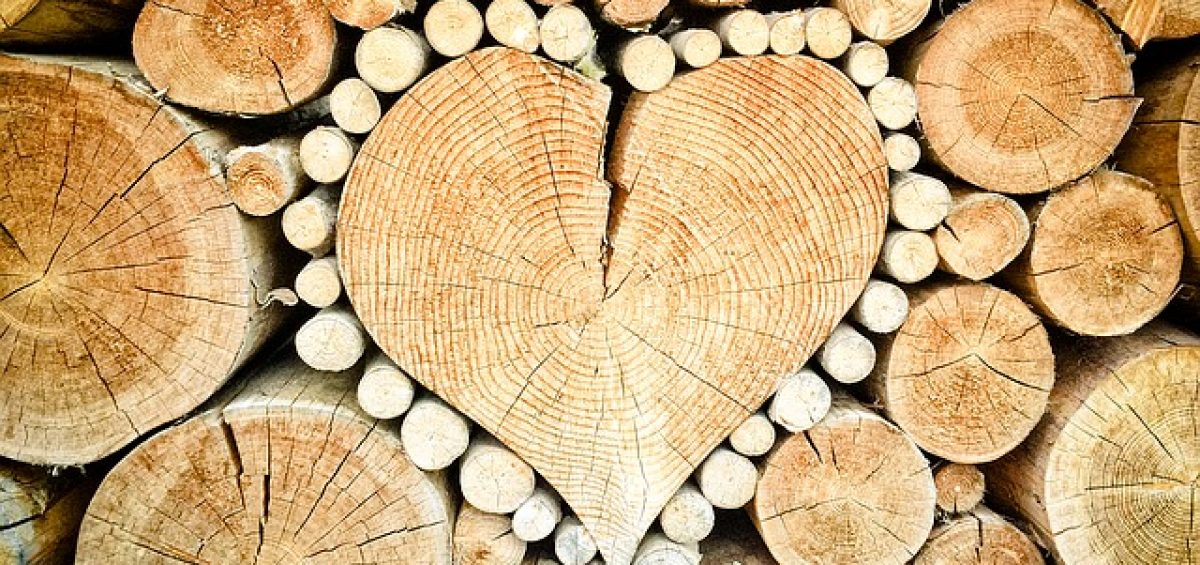 Image of logs